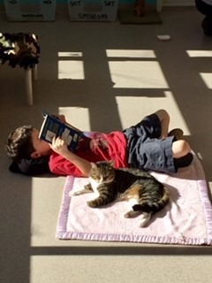 Read To Cats